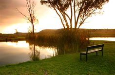 Eastco Magalies Holiday Resort, Campsite, Outdoor Furniture, Outdoor Decor, South Africa, Beautiful Pictures, Tours, Park, Country