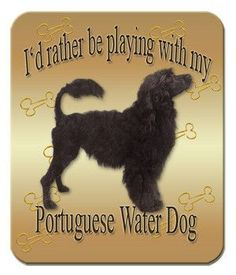 Portuguese Water Dog Show Ring Clip//Number Holder