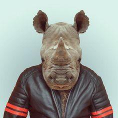 """Parte 1: """"Zoo Portraits"""" una serie de divertidos retratos de Animales con mucho estilo. Trabajo de Yago Partal"""