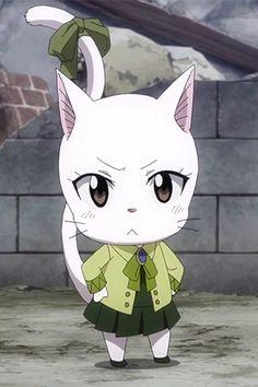 Carla Fairy Tail Cat, Fairy Tail Happy, Fairy Tail Gruvia, Fairy Tail Girls, Fairy Tail Love, Fairy Tail Manga, Fairy Tail Characters, Anime Characters, Charle Fairy Tail