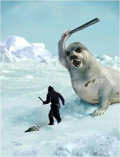 Karma…love it! Seal hunt should be banned. Canada should no longer allow this atrocity. Makes me ashamed to be Canadian. Be an advocate and protest the seal hunt. Do not wear fur of any kind. Amor Animal, Baby Seal, Drawn Art, Stop Animal Cruelty, Animal Welfare, Animal Rights, Polar Bear, Animal Kingdom, Chihuahua