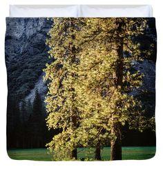 """Trees in Sunset Light King (104"""" x 88"""") Duvet Cover"""