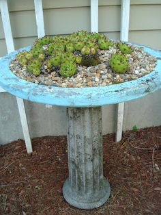 Aha! I have a cracked birdbath, don't know what to do with it. Here's what ... Cricket Acres Studio-cracked birdbath becomes succulent garden