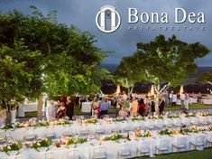 Enjoy an evening outdoors at Bona Dea Private Estate! Let the talented team of event coordinators create an unforgettable experience under the stars. Perfect Wedding, Dream Wedding, Indoor Ceremony, Garden Park, Under The Stars, Event Management, Most Romantic, Vacations, Wedding Venues