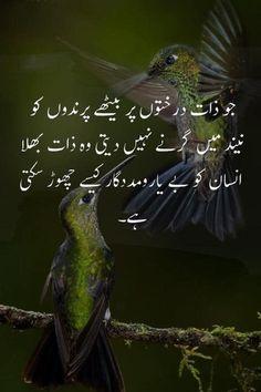 Urdu Quotes Islamic, Inspirational Quotes In Urdu, Sufi Quotes, Poetry Quotes, Islamic Messages, Qoutes, Motivational Quotes, Beautiful Quotes About Allah, Beautiful Islamic Quotes