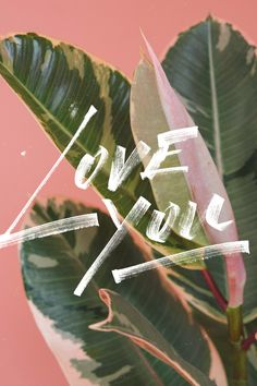 Download | Love, You – Cocorrina