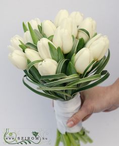Esküvő menyasszonyi csokor - Szirom Tulip Bouquet Wedding, White Tulip Bouquet, Daffodil Wedding, White Tulips, Wedding Flowers, Bridal Dresses, Wedding Gowns, Daffodils, Flower Decorations