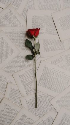 23 Rose Quotes Positive Quotes Pinterest Quotes Rose Quotes