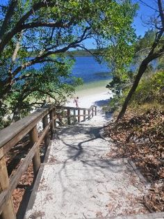 Fraser Island, Australia. Go to www.YourTravelVideos.com or just click on photo for home videos and much more on sites like this.