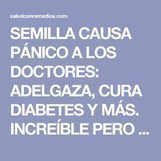 SEMILLA CAUSA PÁNICO A LOS DOCTORES: ADELGAZA, CURA DIABETES Y MÁS. INCREÍBLE PERO CIERTO!!!   Salud con Remedios