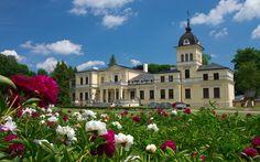 Pałac Kleniewskich w Kluczkowicach wzniesiony w XIX wieku. Obecnie mieści się w nim Zespół Szkół Zawodowych oraz Muzeum Regionalne.