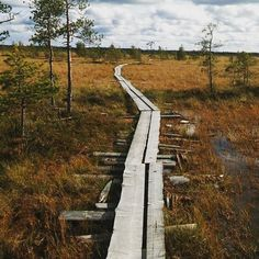 "South Ostrobothnia province of Western Finland. - Etelä-Pohjanmaa""Paukaneva #seinäjoki #suo #luonto #nature #swamp Railroad Tracks, Finland, Sidewalk, Southern, Country Roads, Instagram Posts, Sidewalks, Pavement, Walkways"