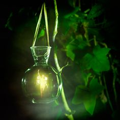 norse-nature-spirit:  Fairy Light by Invi-Light