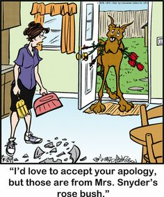 Dog Comics, Funny Comics, Bedtime Prayer, Gentle Giant, Princess Leia, Siamese Cats, Animal Quotes, Comic Strips, Funny Dogs