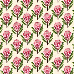 Pretty Proteas Fabric Swatch // Handmade By Me Textures Patterns, Color Patterns, Pattern Designs, Protea Art, Decoupage, Paper Background, Background Templates, Background Patterns, Illustrations