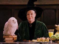 I got: Minerva McGonagall! Which Hogwarts Professor Are You?