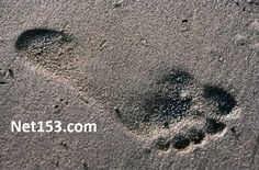Today's Prayer: Footprints