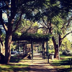 Hanging in the park. Australia, South Wales, Park, Country, Windsor, Places, Outdoor Decor, Sydney, Pictures