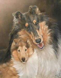 Collie painting by Barbara Guitas