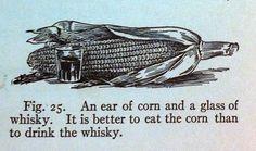 CornWhiskey FirstBookOnHealth