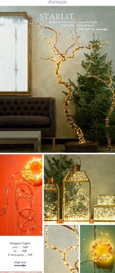 Our favorite light returns, now in three lengths to light up the season and beyond at Terrain.