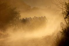 OFF-ROAD RACING: Cyclists rode up the first major climb during Stage 1 of the ABSA Cape Epic mountain bike race near Citrusdal, South Africa, Monday. France Jersey, Mountain Bike Races, Off Road Racing, Today Pictures, Cool Bikes, Ny Times, Cycling, Tours, Sayings