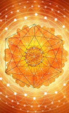 To grow a healthier culture we need to deepen our roots by connecting to the biological realities which allow us to grow in a way that is sustainable. When we can connect with the deep sentience, wisdom and healing power within the plant kingdom, our eyes 2nd Chakra, Sacral Chakra, Sacred Geometry Art, Sacred Art, Mandala Art, Yoga Studio Design, Tantra, Zentangle, Yoga Inspiration