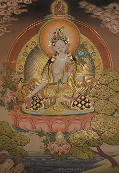 Tara Blanca (Sitatara) se le relaciona con la longevidad. Su mantra se canta mientras se piensa en determinada persona. Es otra representación de la compasión y tiene siete ojos (un par en el rostro,  uno en cada palma de sus manos, otro en las plantas de sus pies y uno más en la frente). Es un símbolo de que la mente compasiva está siempre vigilante. Su Mantra OM TARE TUTTARE TURE MAMA AYUR PUNE GYANA PUNTIN KURU SOHA.