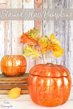 Alcohol ink is an amazing craft product you can use to transform clear glass from your recycling bin or the thrift store into positively STUNNING home decor. Use this technique to create a stained glass look on pumpkins in just minutes with this easy upcycling idea. #alcoholink #alcoholinkpainting #pumpkindecor #stainedglass #falldecor #DIYfalldecor #alcoholpaint #Fallcraftideas #autumndecor Alcohol Ink Glass, Alcohol Ink Painting, Alcohol Inks, Mercury Glass Decor, Glass Pumpkins, Pumpkin Decorating, Fall Decorating, Diy Pumpkin, Pumpkin Carving