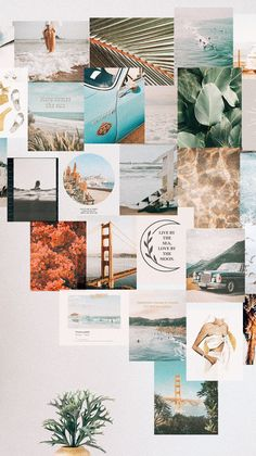 This kit features prints with a film quality look for a calm, vintage vibe. With every purchase, we donate of profits to Ocean Conservancy. Wall Collage Decor, Photo Wall Collage, Picture Wall, Teen Wall Decor, Collage Walls, Iphone Wallpaper Tumblr Aesthetic, Aesthetic Pastel Wallpaper, Aesthetic Wallpapers, Homescreen Wallpaper