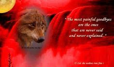 The most Painful Goodbyes Wolf Love, Wolf Pictures, Wolf Spirit, Animal Rights, More Photos, Sayings, Wolves, Animals, Respect