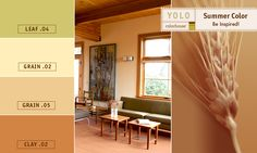 YOLO Colorhouse Summer COLOR! Be Inspired!