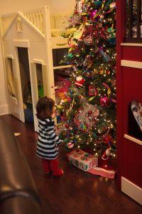 Christmas Decorating Ideas, Christmas tree theme, Show Me Decorating