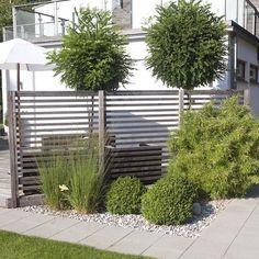 Home Home Porch Patio Garden Shrubs, Garden Trellis, Back Gardens, Outdoor Gardens, Terrace Garden Design, Home Porch, Plantar, Garden Planning, Garden Inspiration
