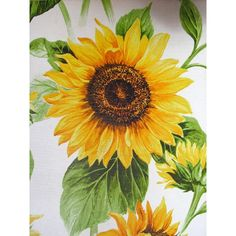 vintage sunflower pics - Yahoo Search Results Yahoo Search Results