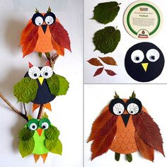 Make Owls Out of Leaves