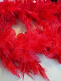 BRIGHT RED FEATHERS - C