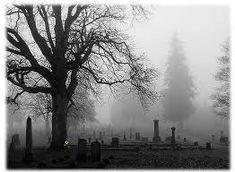 foggy cemeteries, my fav! Cemetery Headstones, Old Cemeteries, Cemetery Art, Graveyards, Yennefer Of Vengerberg, Vides, Vampire, Arte Horror, Dark Photography
