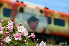 ウツギ&妖怪ウォッチ列車