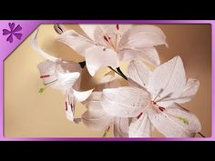 DIY: How to make Calla Lilly with Crepe paper - YouTube