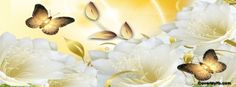 Elegant White and Gold Cover Pics For Facebook, Fb Cover Photos, Facebook Timeline Covers, Cover Picture, Twitter Cover Photo, Fb Covers, Book Covers, Wallpaper Backgrounds, Wallpapers