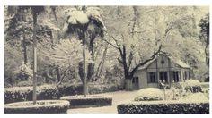 ΠΑΡΚΟ ΠΛΑΤΕΙΑ ΑΡΕΩΣ Athens, Greece, Snow, Painting, Art, Greece Country, Art Background, Painting Art, Kunst