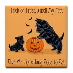 black Scotties Halloween card with JOL