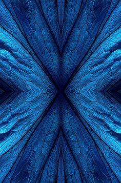 blue hues – Just another WordPress site Blue Dream, Love Blue, Blue And White, Azul Indigo, Bleu Indigo, Azul Pantone, Image Bleu, Le Grand Bleu, Everything Is Blue