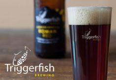 Triggerfish Brewing More Beer, Pint Glass, No Time For Me, Brewing, African, Drinks, Beverages, Beer Glassware, Brow Bar