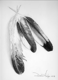 Pencil Drawings of Eagles | ... place where I share the work I do in fine art drawing compositions