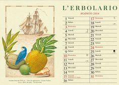 Comoda questa noce di Cocco per un riposino, vero cara Vini peruviana? Benvenuto #agosto! > http://www.erbolario.com/pubblicazioni/calendari