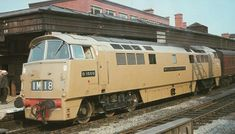 Doesn't this look like Diesel 10 from Thomas? Electric Locomotive, Diesel Locomotive, Steam Locomotive, Uk Rail, Rail Car, Steam Trains Uk, Railroad Pictures, Old Trains, British Rail