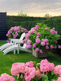 50 DIY Garden Layout Plans for Your Back Yard and Front Yard - The First-Hand Fashion News for Females - Modern Design Amazing Gardens, Beautiful Gardens, Beautiful Flowers, Endless Summer Hydrangea, Pink Hydrangea, Growing Hydrangea, White Hydrangeas, Diy Garden, Dream Garden