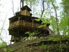 Tree Home Pictures! This is a collection of Tree house pictures that are worthy of living in. A Dreamers Dream!